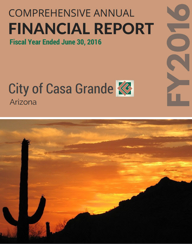 Cover for the 2016 Financial Report