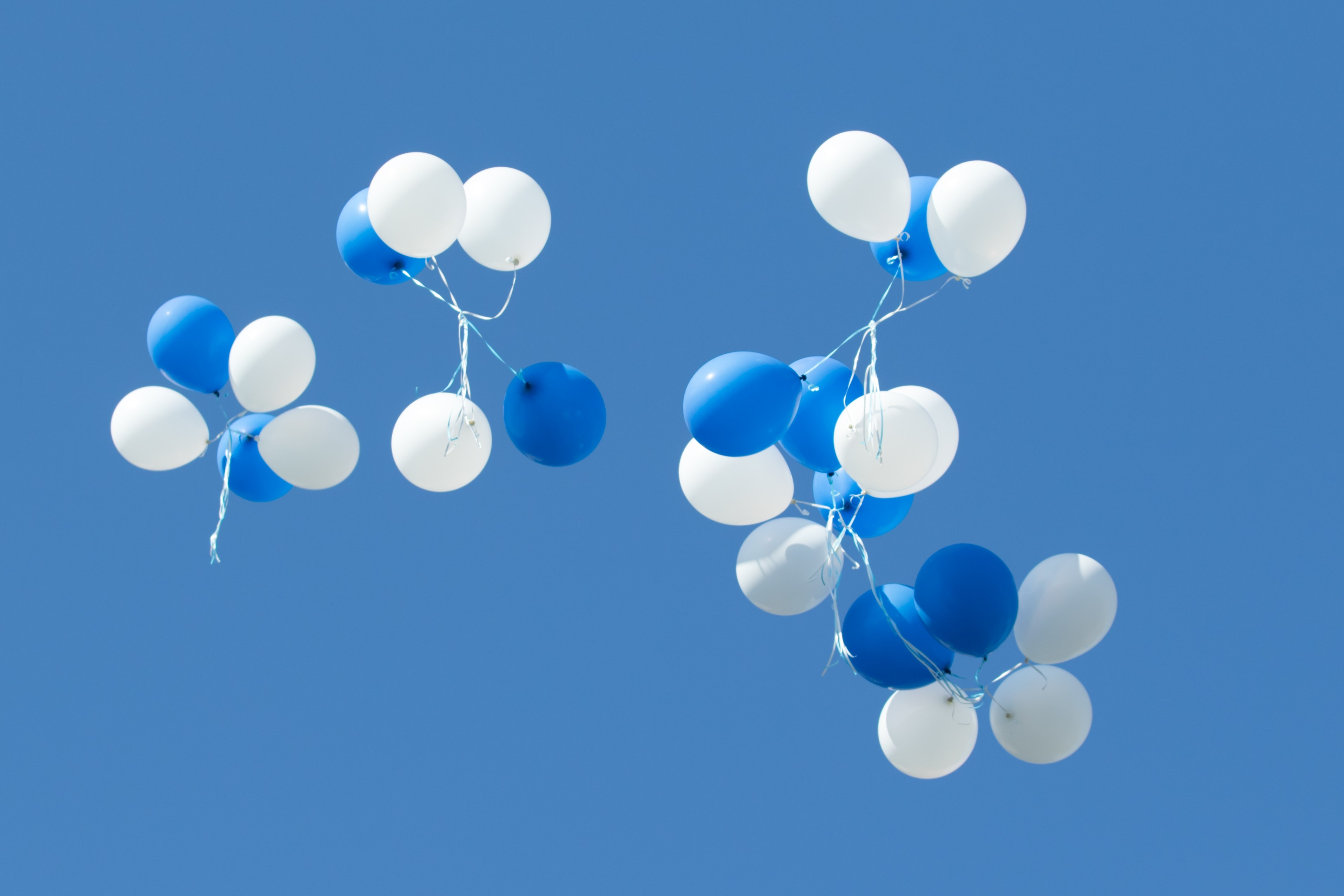 white and blue balloons in the sky